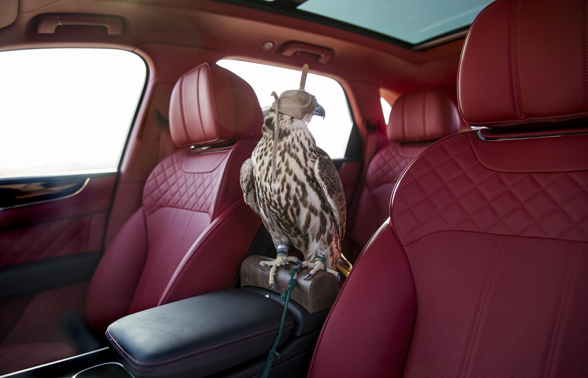 начало продаж bentley falcon