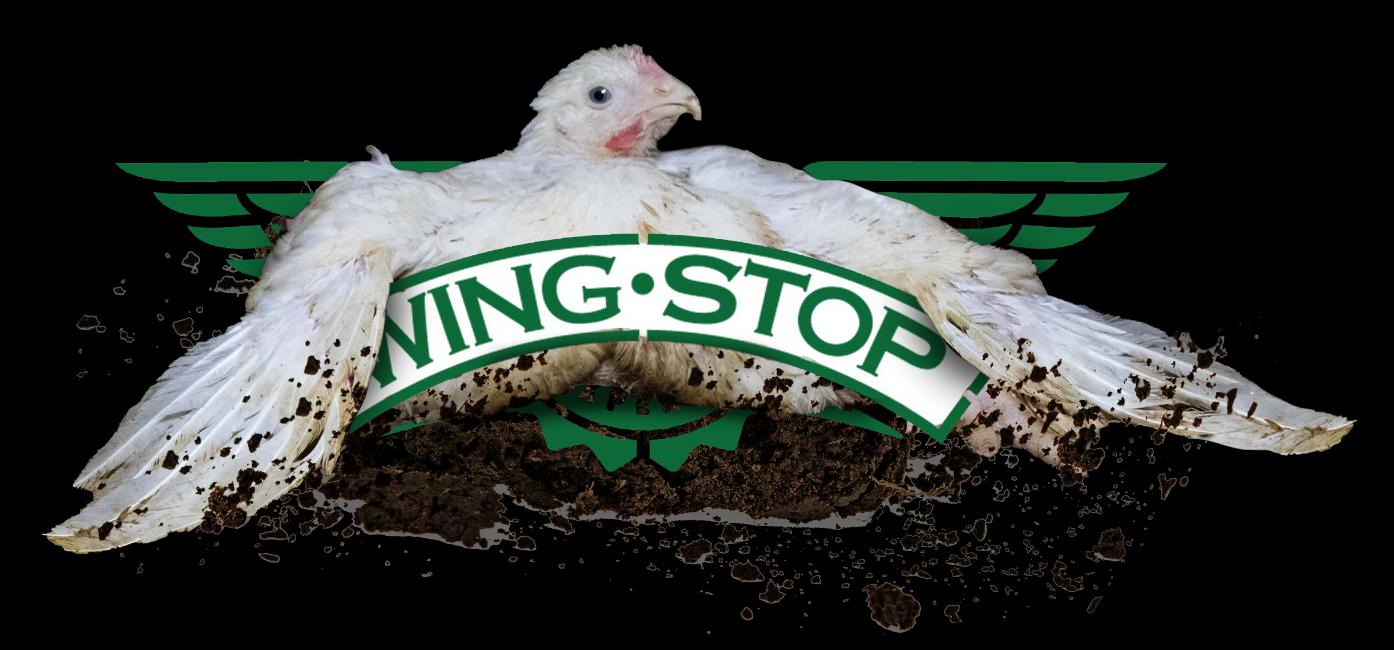 Wingstop Cruelty