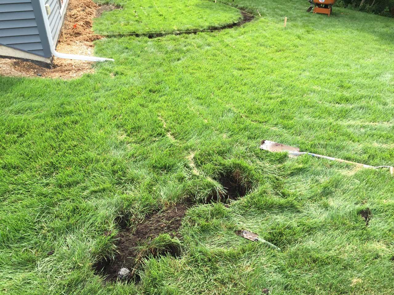 Sprinkler line branch, zoomed out