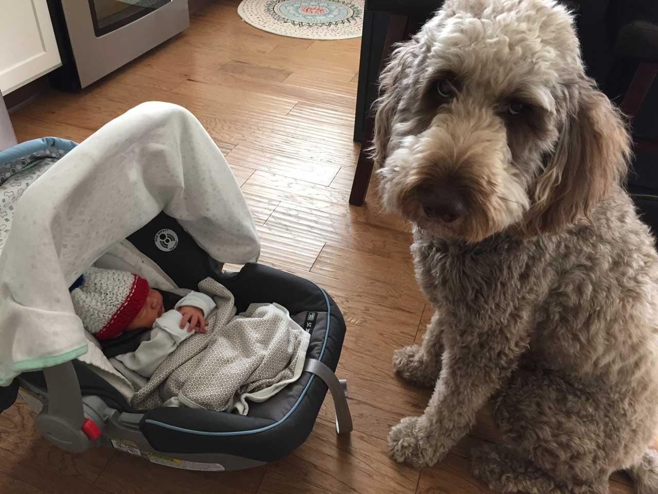 Ruby, meet Charlie!