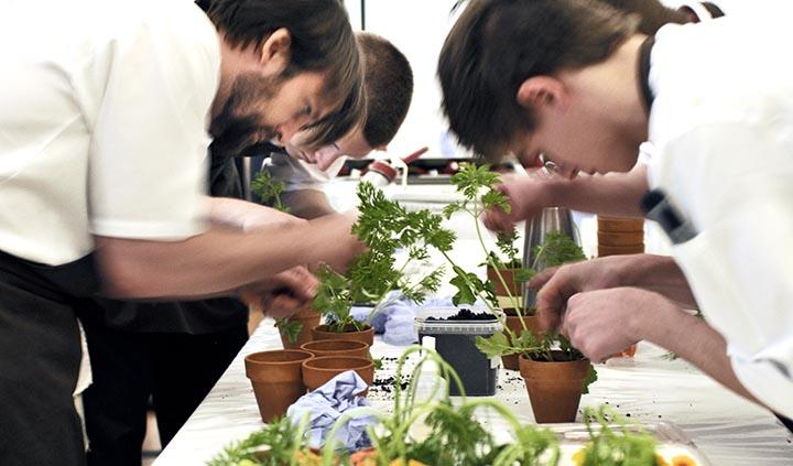 Noma Restaurant - Rene (left) and his team assembling the pot plants.