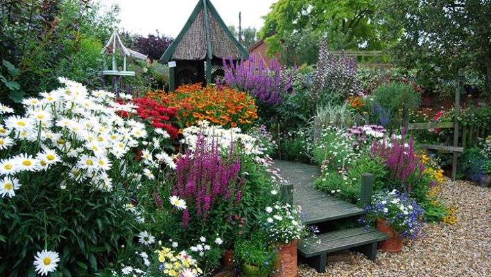 Garden Colour: It's more than just Flowers