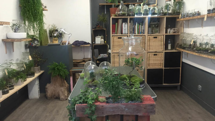 The Green Factory: horticulture without the hassle