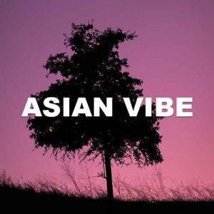 Asian Vibe