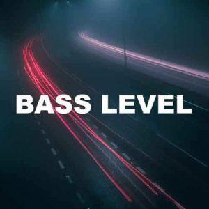 Bass Level
