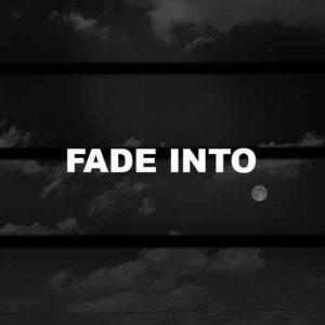 Fade Into