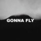 Gonna Fly