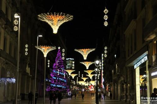 2014_Barcelona_157