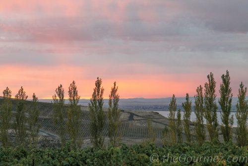 sunrise horse heaven hills alexandria nicole destiny ridge