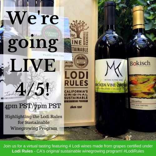 Lodi Rules Wine Tasting Planter Box