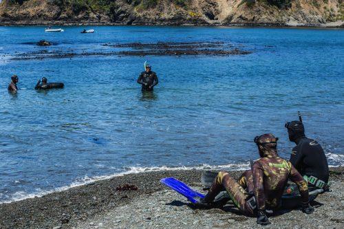 abalone camp little river inn