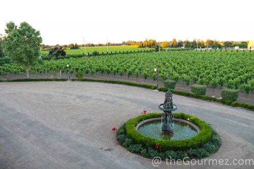 lodi, visit lodi, wine, wine tourism, countryside, viaggio estates