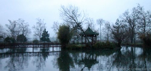 chateau montelena, rain, jade lake