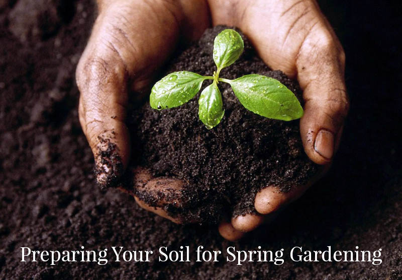 Preparing your soil for spring gardening
