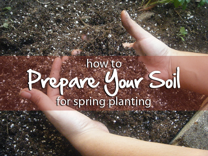 how to prepare your soil for spring planting