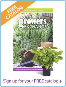 Request a Growers Exchange Herb Catalog
