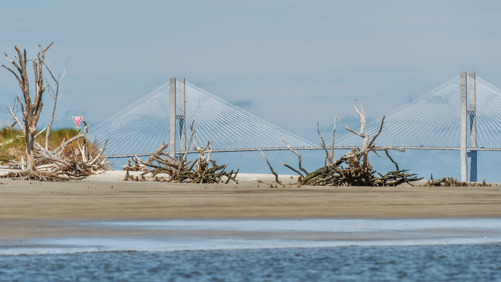 Driftwood beach and bridge