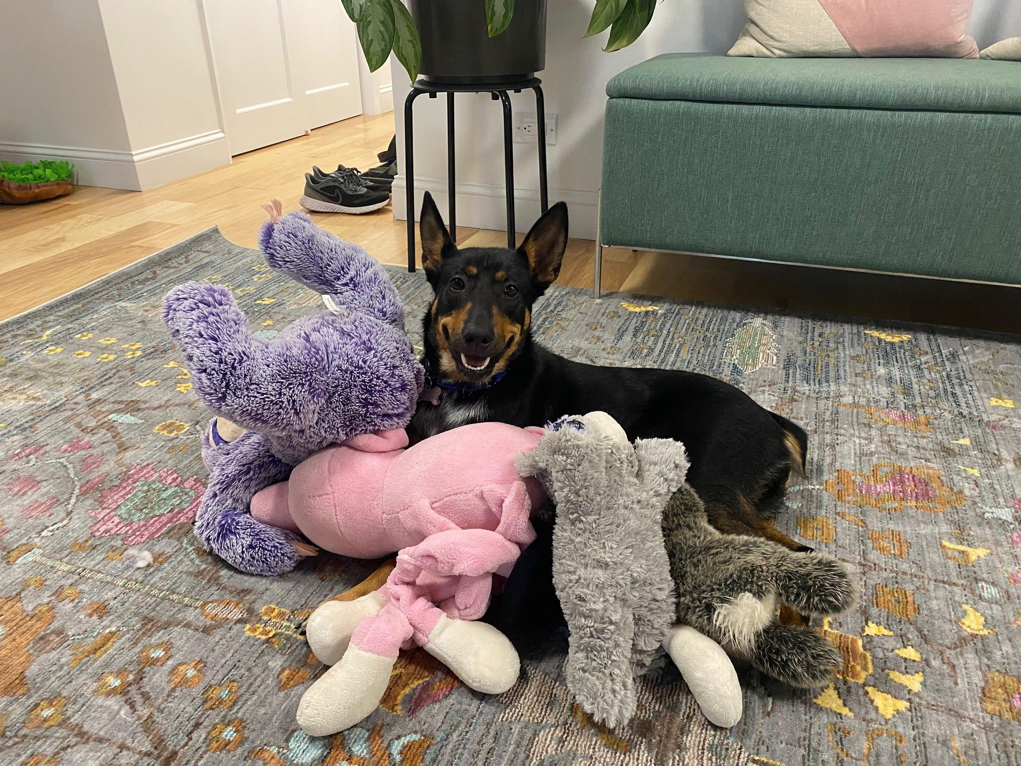 Podcast 730 Billie With Her Favorite Toys