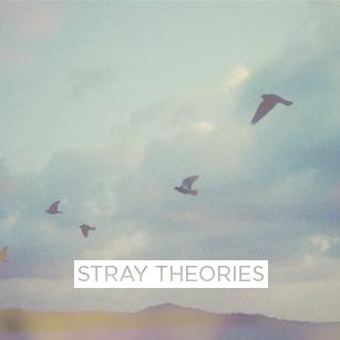 Stray Theories