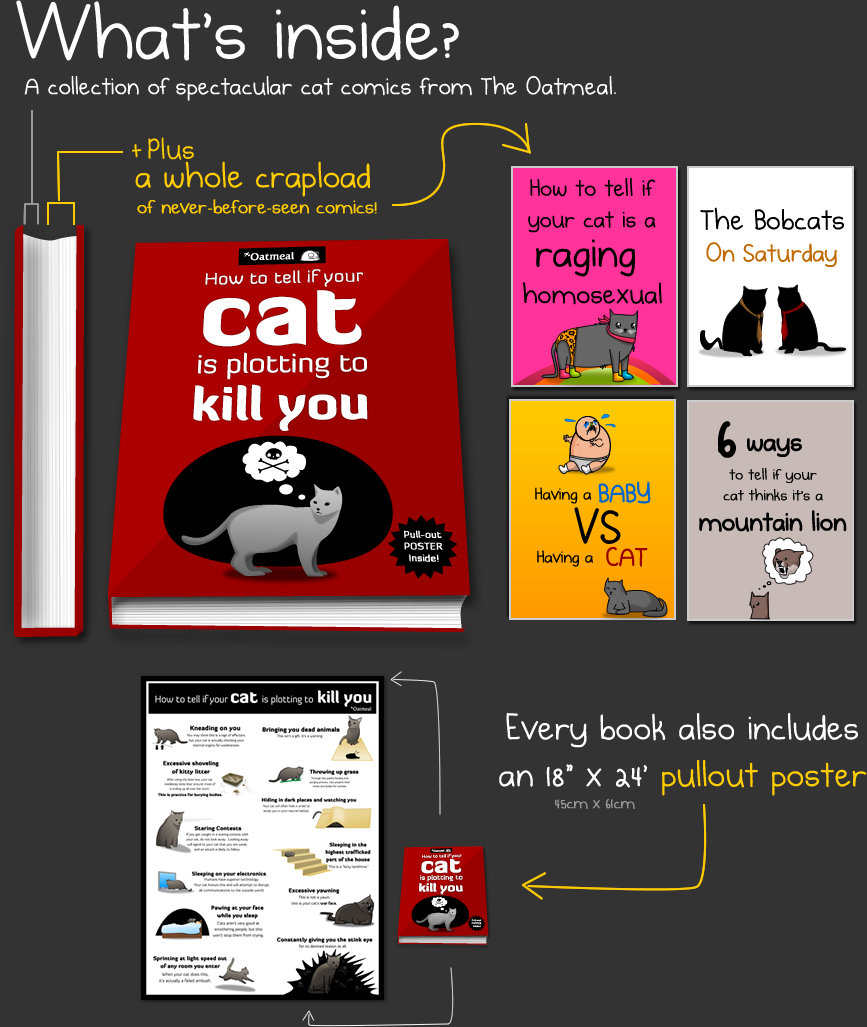How To Tell If Your Cat Is Plotting To Kill You A Book By The