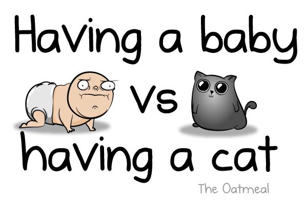Having A Baby Vs Having A Cat The Oatmeal