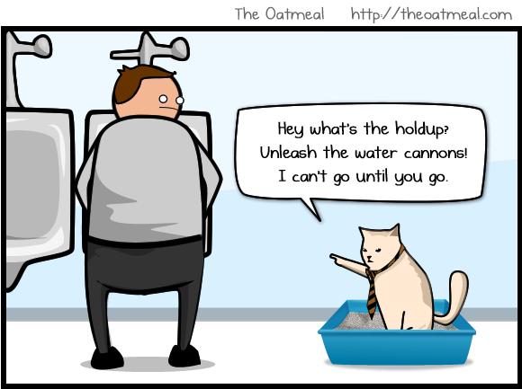 Catbox Modesty