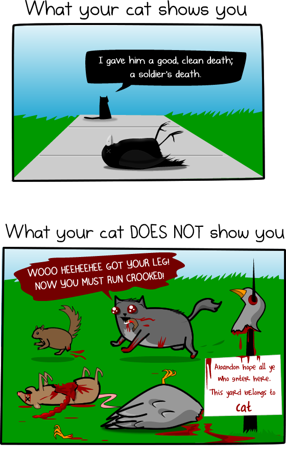 How Much Do Cats Actually Kill Infographic The Oatmeal