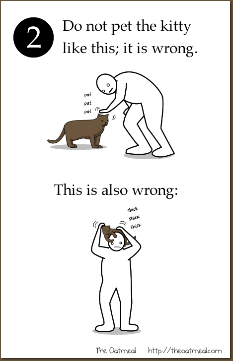 How To Pet A Kitty The Oatmeal