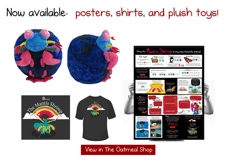 Mantis shrimp signed prints and shirts