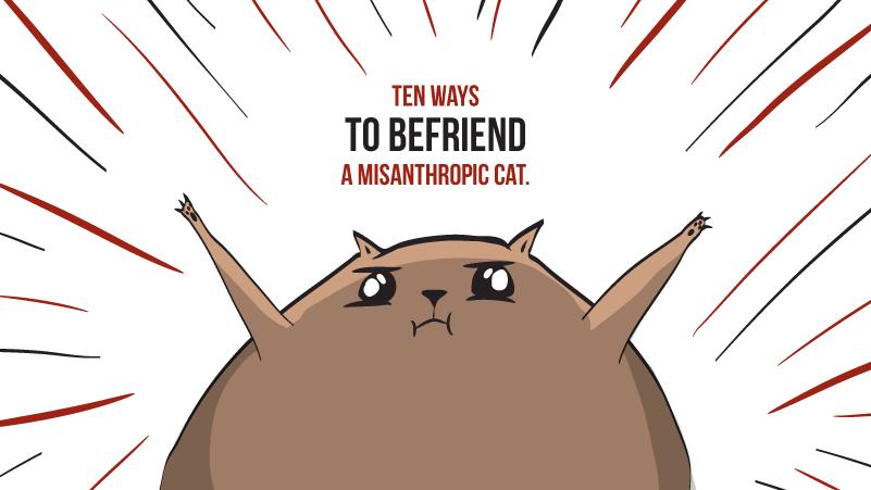 10 ways to befriend a misanthropic cat