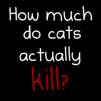 How much do cats actually kill? [Infographic]