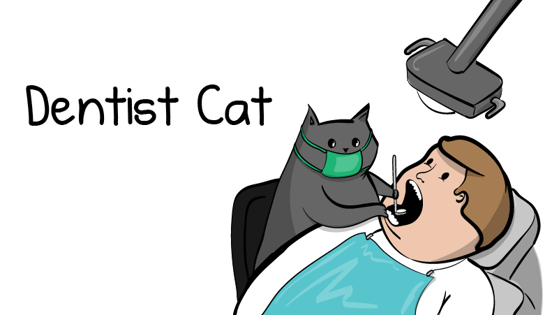 Dentist cat