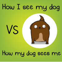 How I see my dog VS how my dog sees me