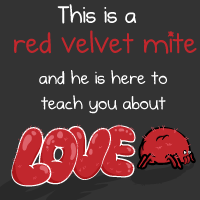 This is a red velvet mite and he is here to teach you about love