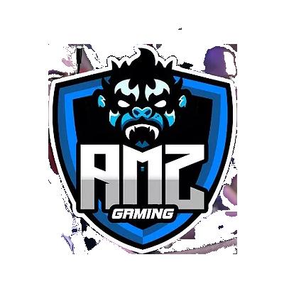 AMZ Gaming