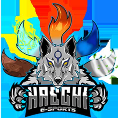 Haechi E-Sports