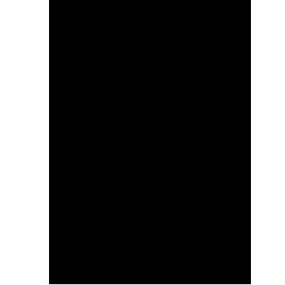 SV Empire