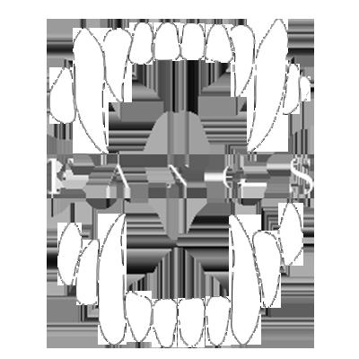 Team FANGS