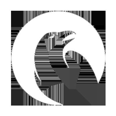 Ravens Esports Club