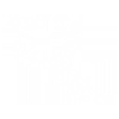Team Rover