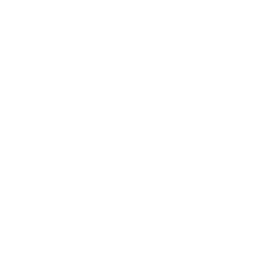 ROX TEAM