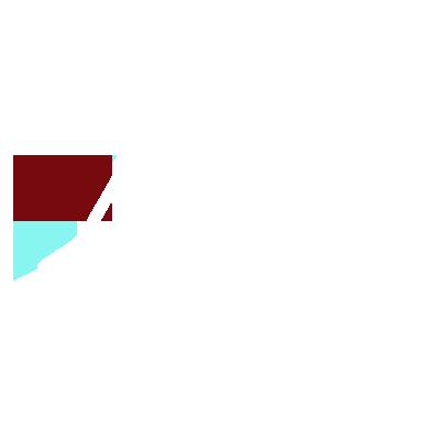 Speed Gaming