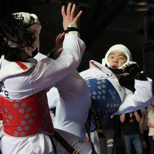 6171 taekwondo