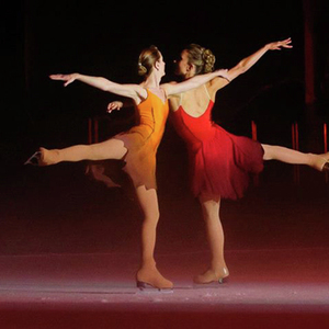 6310 icedancer