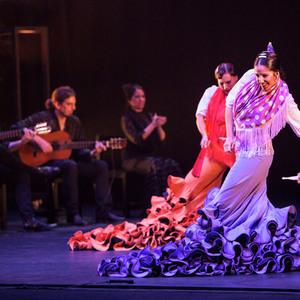 6665 flamenco