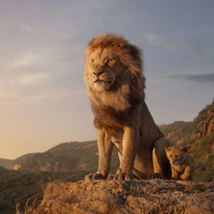 9067 lion king