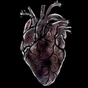 9602 heart