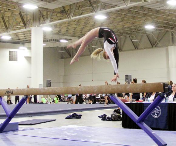 4897 gymnastics