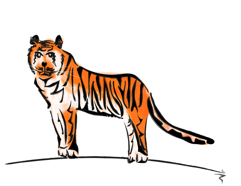 9562 tiger v2