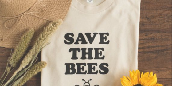 How the Bee Problem is Turning Into a Crisis & How You Can Help